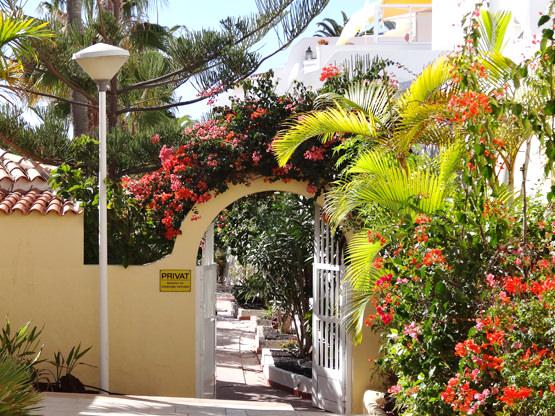 Ferienappartement geschlossene Anlage Fuerteventura