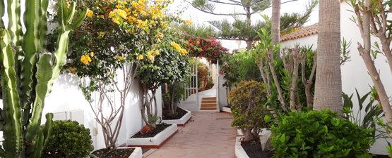 Anlage Casa Calma Costa Calma Fuerteventura